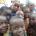 Enfants déplacés de Boko Haram gardent le sourire malgré les souffrances